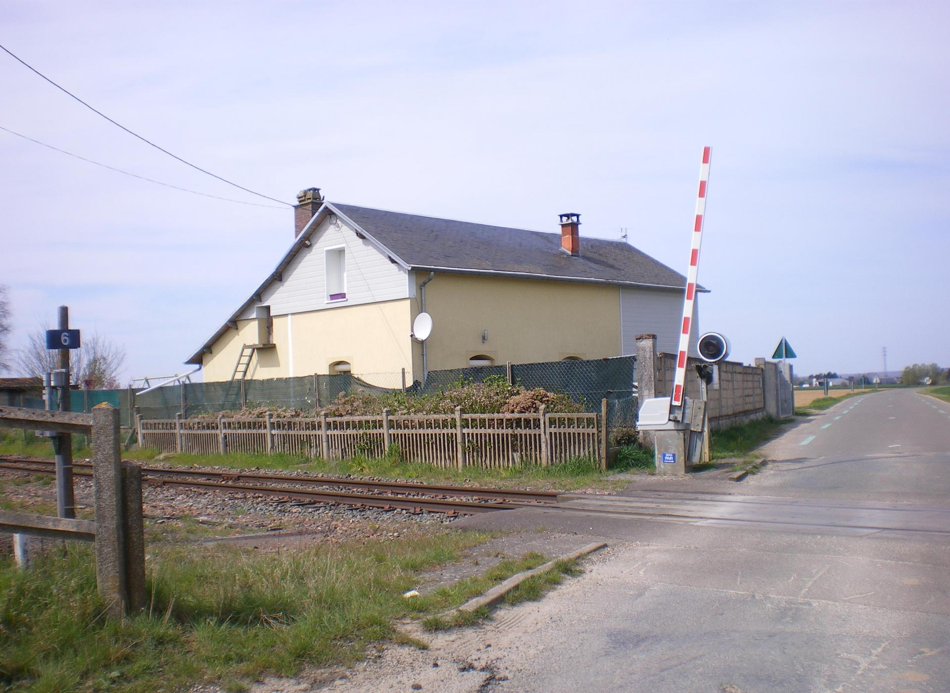 Imgp2954